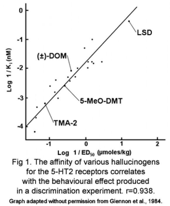 5-HT2 Receptor Affinity