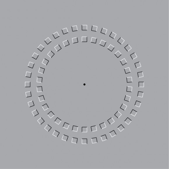 pinna-illusion-image.jpg